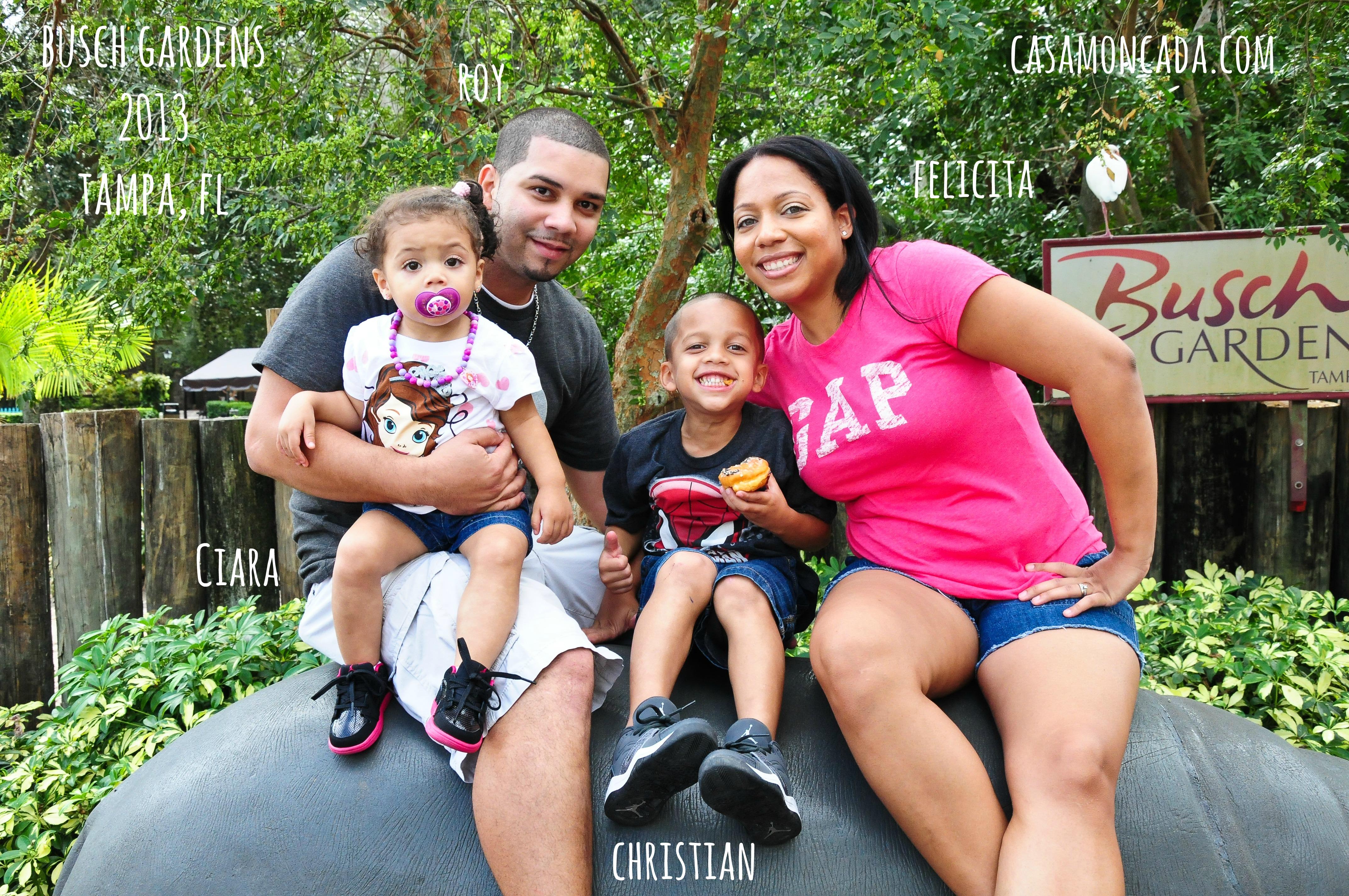 buschgardens family