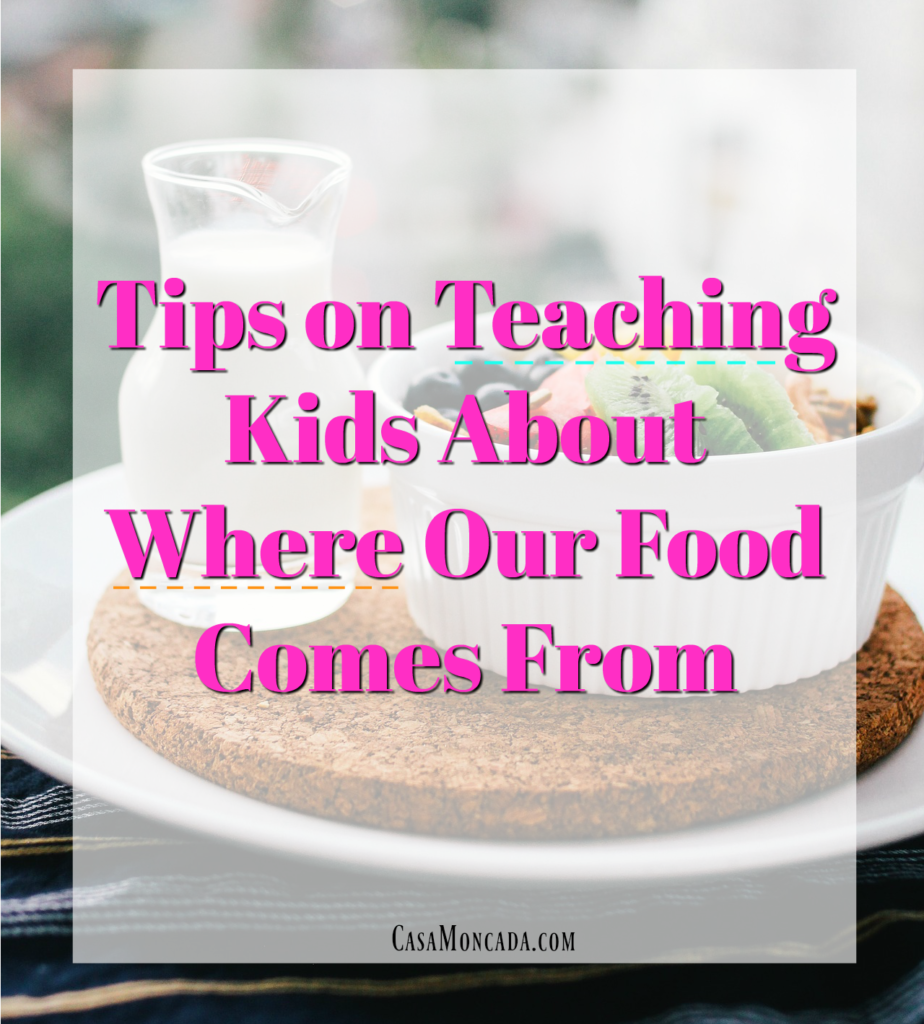 Tips on teaching kids where our food comes from
