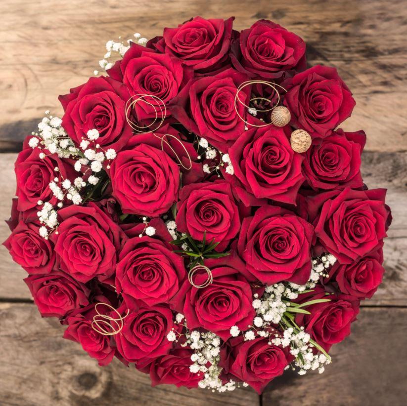 sense Ecuador red roses
