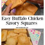 Easy Buffalo Chicken Dip Savory Squares