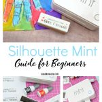 Mint guide for beginners