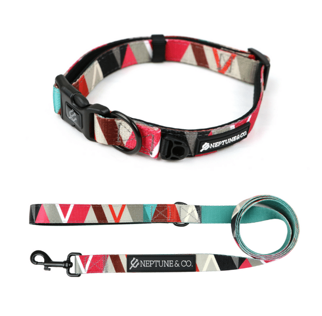 neptune & co collar and leash set