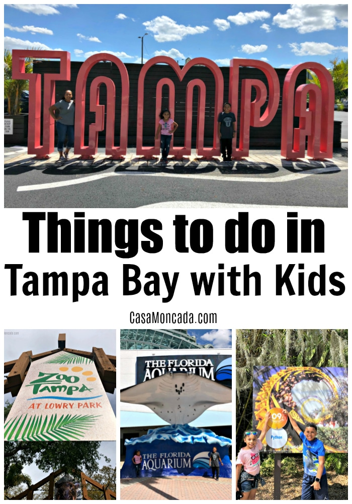 Things to do in Tampa Bay with Kids